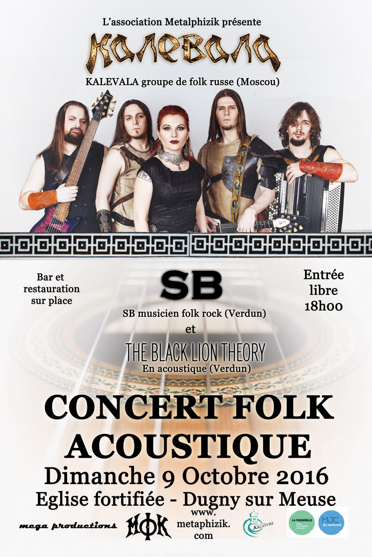 Affiche concert rock folk