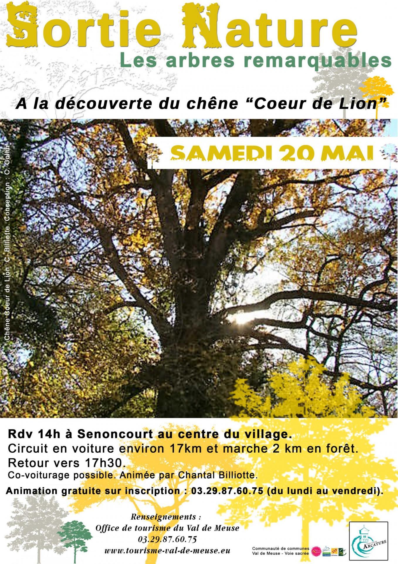 Affiche sortie chene senoncourt web