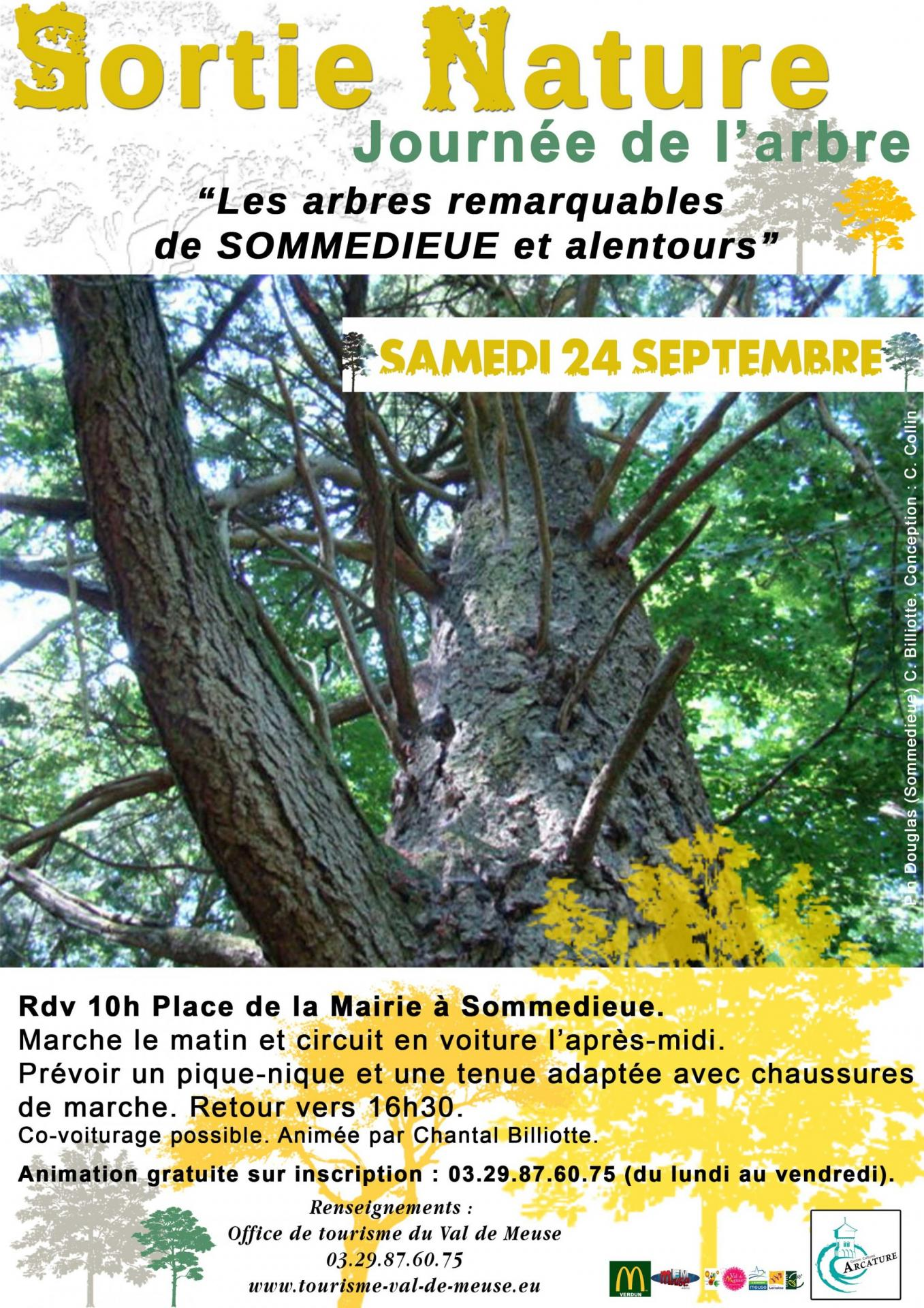 Journee arbre web
